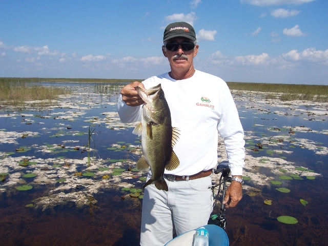 South florida bass fishing reports blog florida for Southeast florida fishing report
