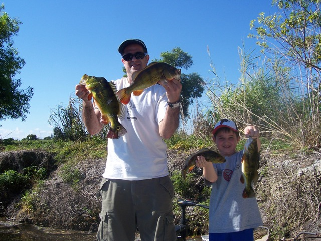 South florida bass fishing reports blog search results for Florida bass fishing guides
